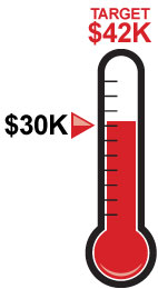 donations above 30K