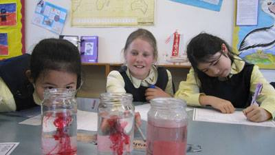 4th Class explore endothermic and exothermic reactions - image 007.jpg-smaller on https://www.johncolet.nsw.edu.au