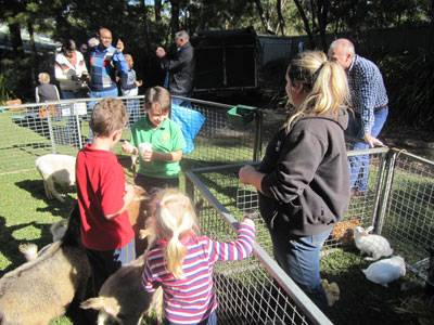 Stage Coordinator Comment - image Open-Day-2015-pettingzoo on https://www.johncolet.nsw.edu.au