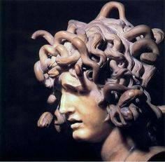 Describing the Medusa - image medusa_image_2 on https://www.johncolet.nsw.edu.au