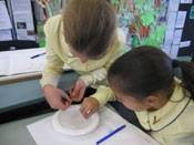 5th class investigates water - image science-5th-blog4 on https://www.johncolet.nsw.edu.au