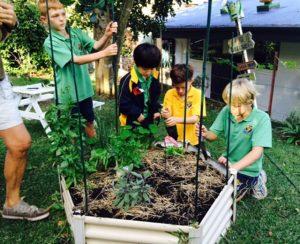 Events - image gardenmay-300x244 on https://www.johncolet.nsw.edu.au