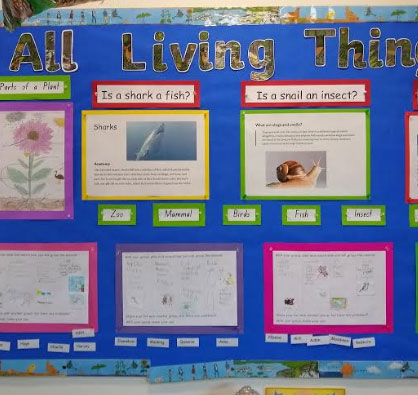A busy week in Second  Class - image science-wall-2C on https://www.johncolet.nsw.edu.au
